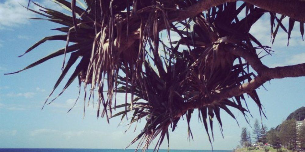 Marketing Gold Coast
